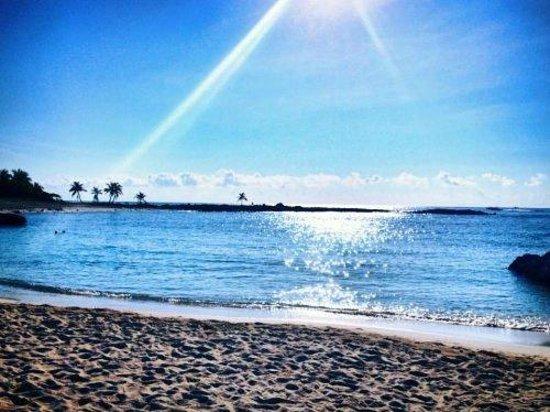 Grand Sirenis Riviera Maya Resort & Spa: Beach,Wow