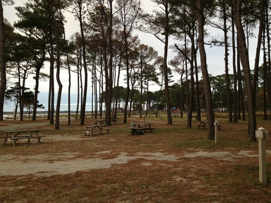 Cherrystone Family Camping Resort : Showing how crowed it wasn't!