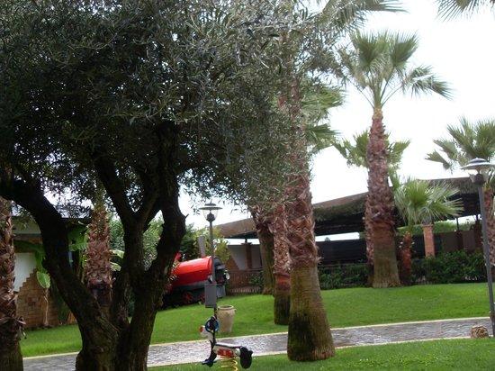 Hotel San Luca: Parque