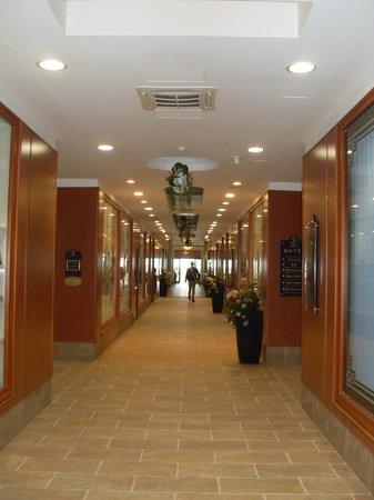 هوتل سنترو كونجريسي سان لوكا: Entrada y Galeria
