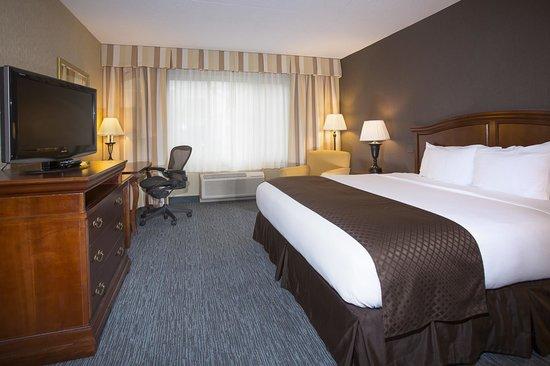 DoubleTree by Hilton Hotel Detroit - Novi: Jr. King Suite