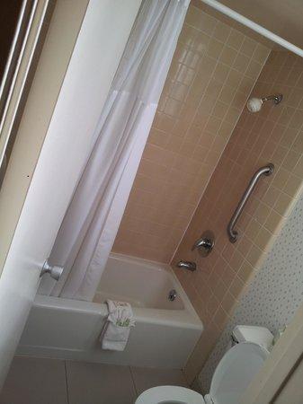Vagabond Inn Ventura: Bath