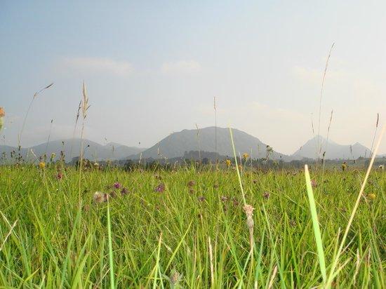 Picos de Tereñes: Pasiaje