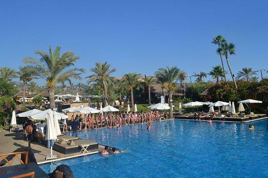 Janna Sur Mer: Gigantic Pool
