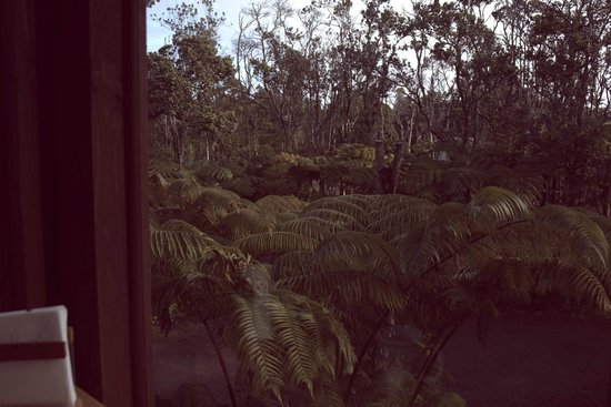 Volcano Inn: breakfast table view
