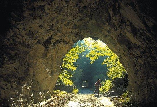 Equi Terme, Italy: Solco di Equi, galleria per la cave di marmo