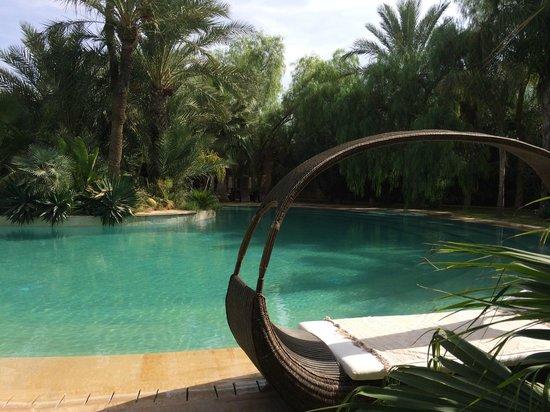 Lodge K: piscine et transat