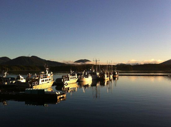 Shearwater Resort & Marina: at sunrise