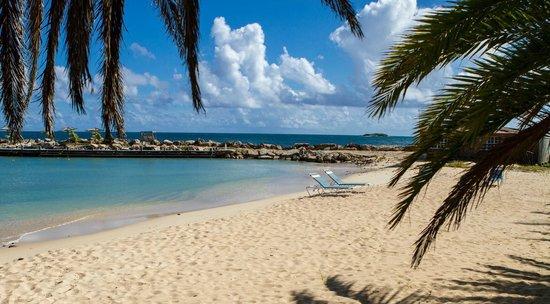 Ocean Point Resort & Spa : beach