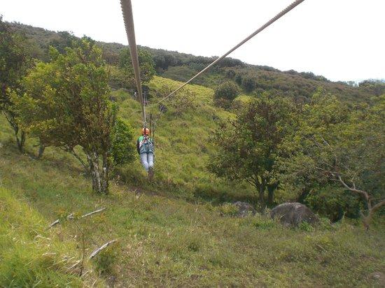 Enchanted Explorer: Ziplining - great for kids, nothing too high