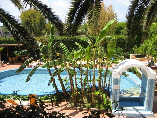 Hotel Villa Angela: бассейн