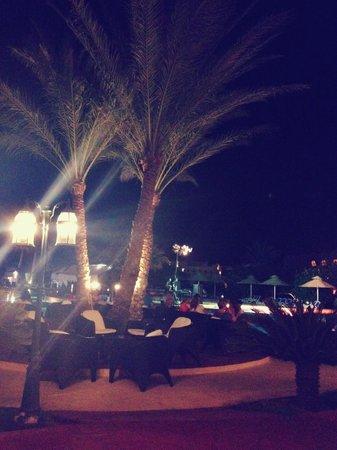 Nubian Island Hotel: на этой фотографии пальмы)