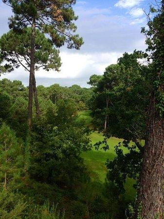 Le Parcours Gourmand: vue depuis la terrasse extérieure