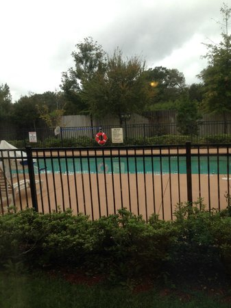 Best Western Wakulla Inn & Suites: Pool from our window