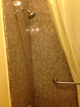 Best Western Wakulla Inn & Suites : Shower