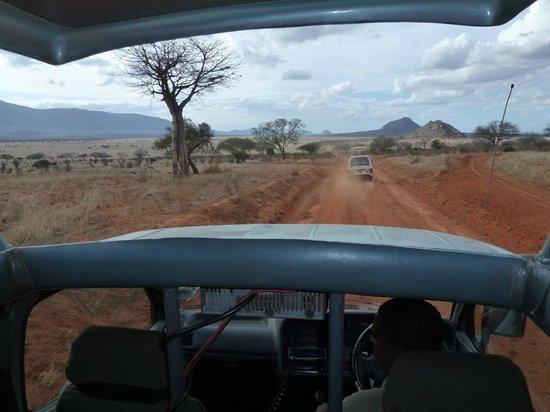 African Memorable Safaris: In the van