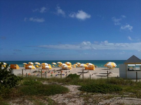 Westgate South Beach Oceanfront Resort: Umbrellas and Beach Toys
