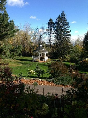A G Thomson House Bed and Breakfast: Beautifully kept grounds