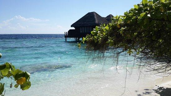 Bandos Maldives: Bandos Island
