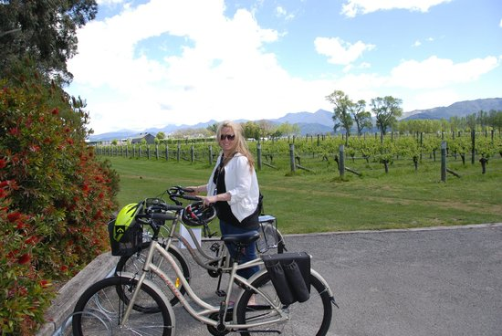 Wine Tours By Bike: Cloudy Bay
