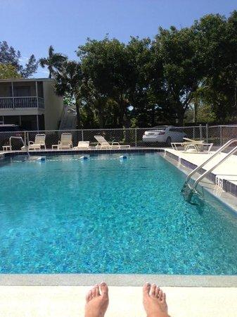 Lido Islander: Pool Area