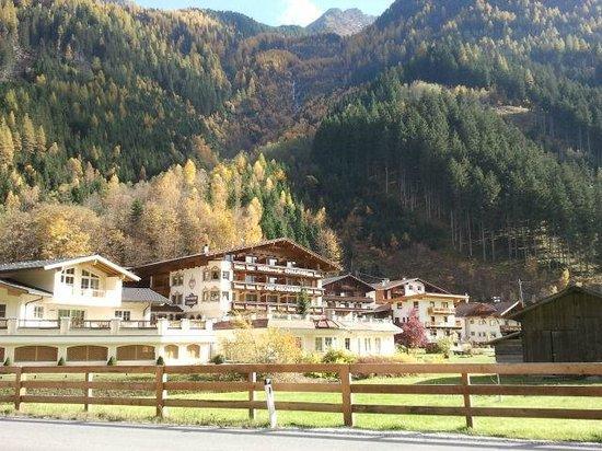 Vitalhotel Edelweiss: L'hôtel