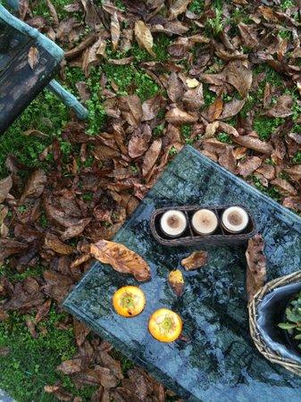 Alice Relais nelle Vigne: Giardino in autunno