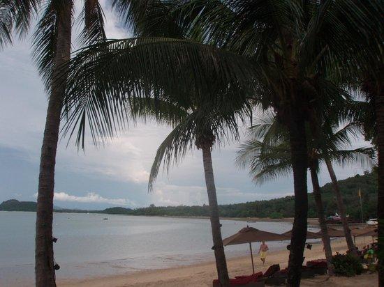 The Village Coconut Island Beach Resort : The Beach