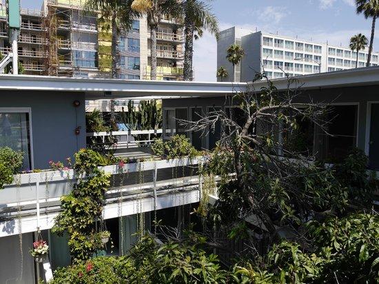 Seaview Hotel : Die grüne Oase