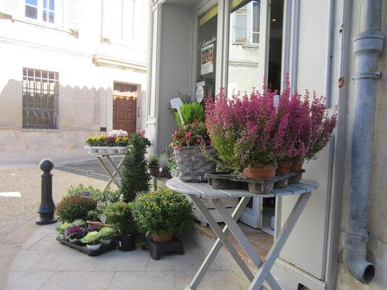 Le Mas de l'ile: Villeneuve-lez-Avignon