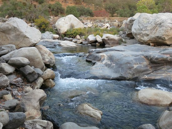 Buckeye Tree Lodge: River close by...