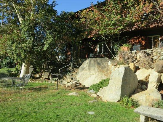 Buckeye Tree Lodge: Lodge