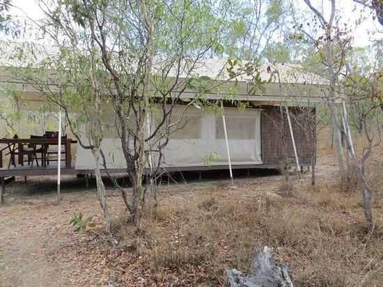 Jabiru Safari Lodge: Eco tent