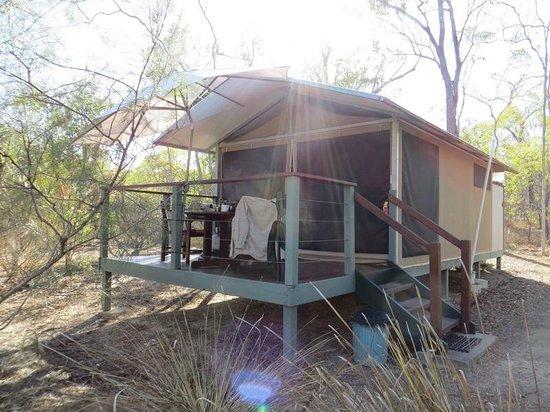 Jabiru Safari Lodge: Deluxe tent