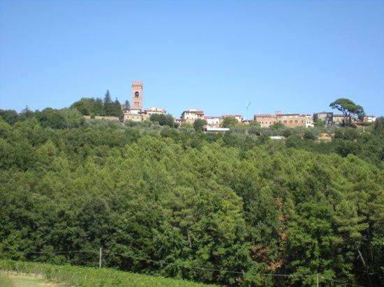 Borgo La Torre: Il borgo di Montecarlo dalla piscina