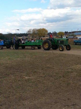 Cox Farms