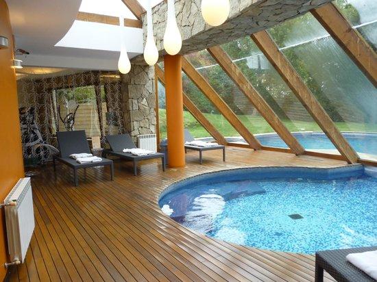 Piscina climatizada interna y externa sauna y gym - Piscina interna casa ...