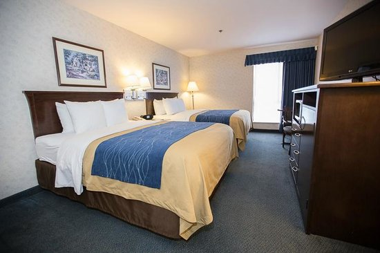Comfort Inn Bellingham: Two Queens with pillow top mattresses