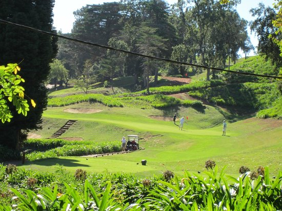 Casa Velha do Palheiro : golf coarse