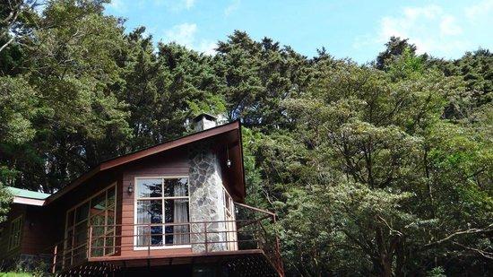 Los Pinos - Cabanas y Jardines: Cabaña Superior