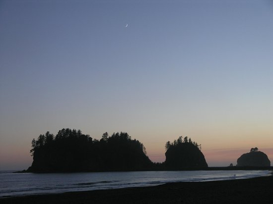 Quileute Oceanside Resort : View from our room