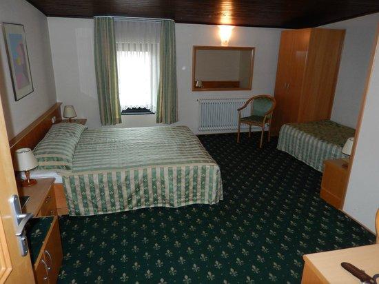 Hotel Mrak: Room