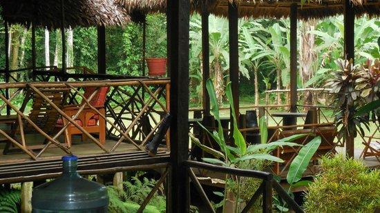 Wasai Tambopata Lodge: The Living Room @ Wasai