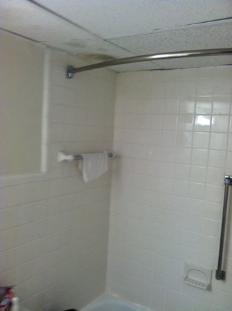Hudson Valley Hotel and Conference Center by FairBridge: Bathroom Shower