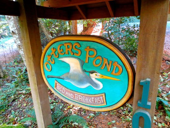 Otters Pond Bed and Breakfast: Otters Pond!