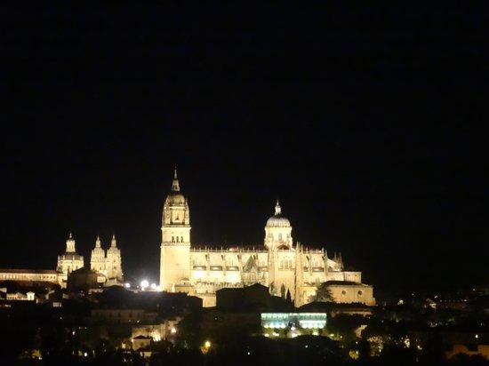 Parador de Salamanca: vista do quarto