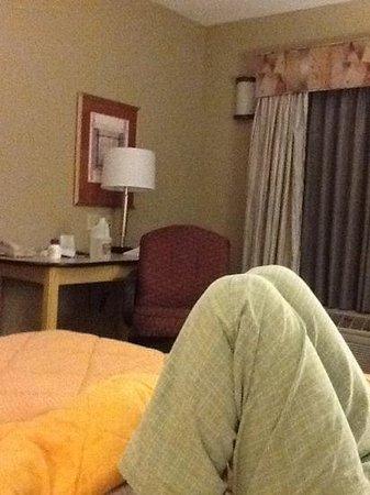 Comfort Inn & Suites Sacramento University Area: sittingon bed view