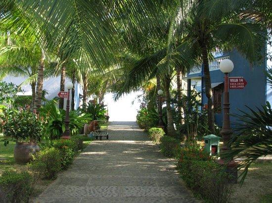 Palmira Beach Resort & Spa: Центральная аллея к пляжу