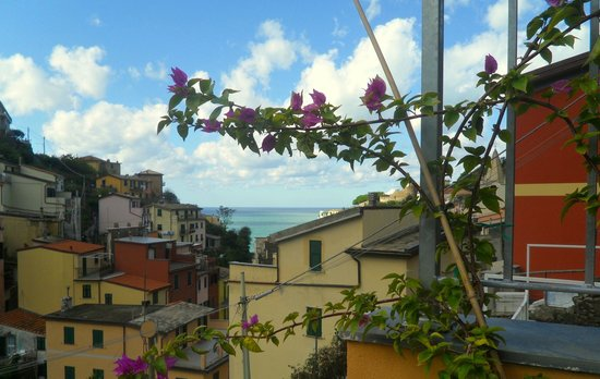 Locanda Ca da Iride: The view from our private terrace adorned with flowers