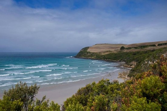 Great South West Walk: Bridgewater Bay looking towards the Seal Colony